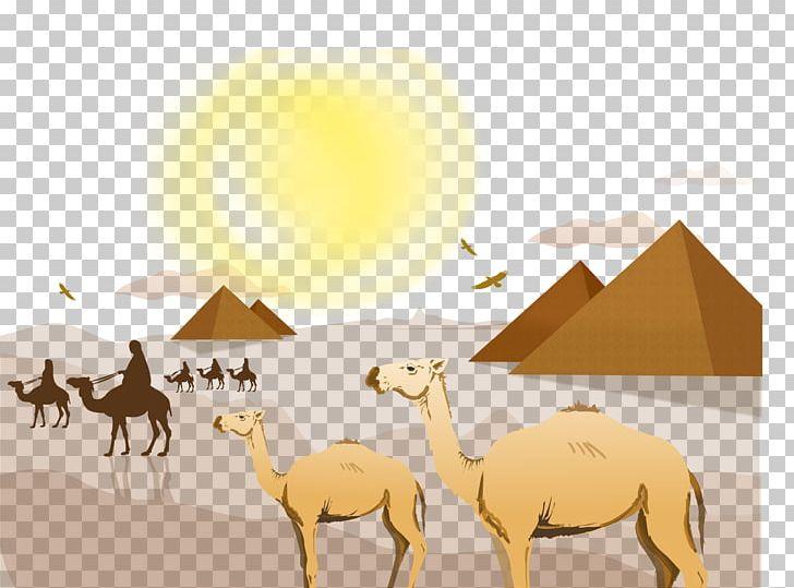 Sahara Desert Landscape Euclidean PNG, Clipart, Animal.