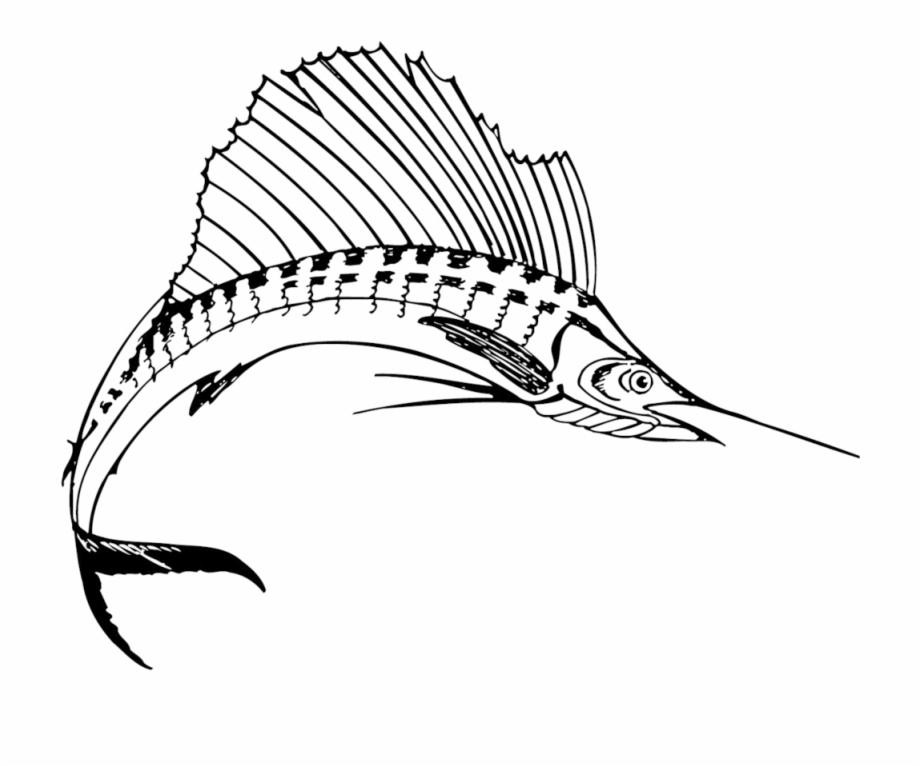 Sailfish Clipart Sport Fishing.