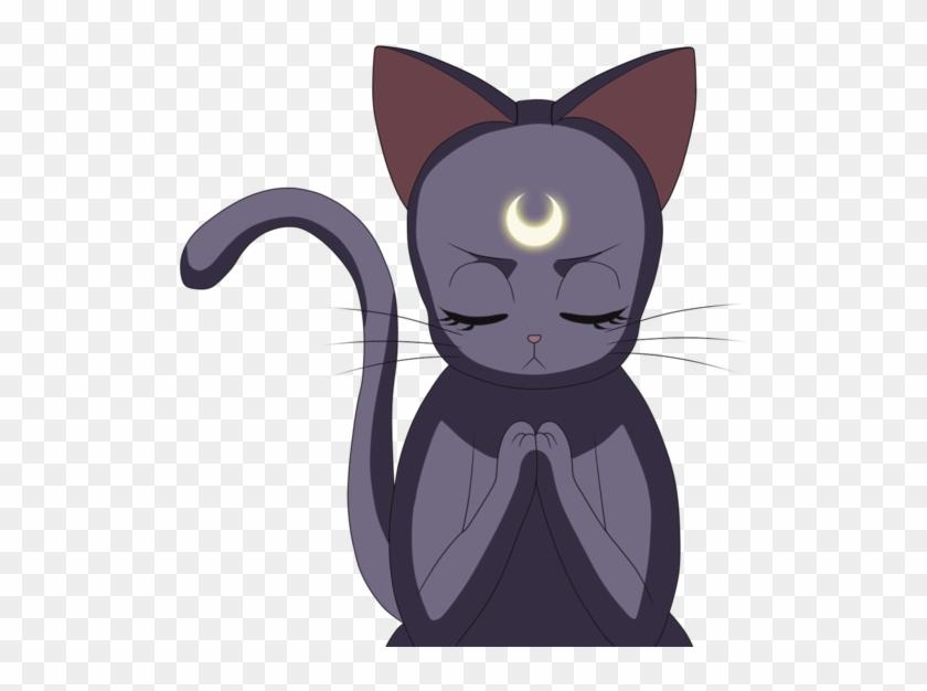 Luna Sailor Moon Png.