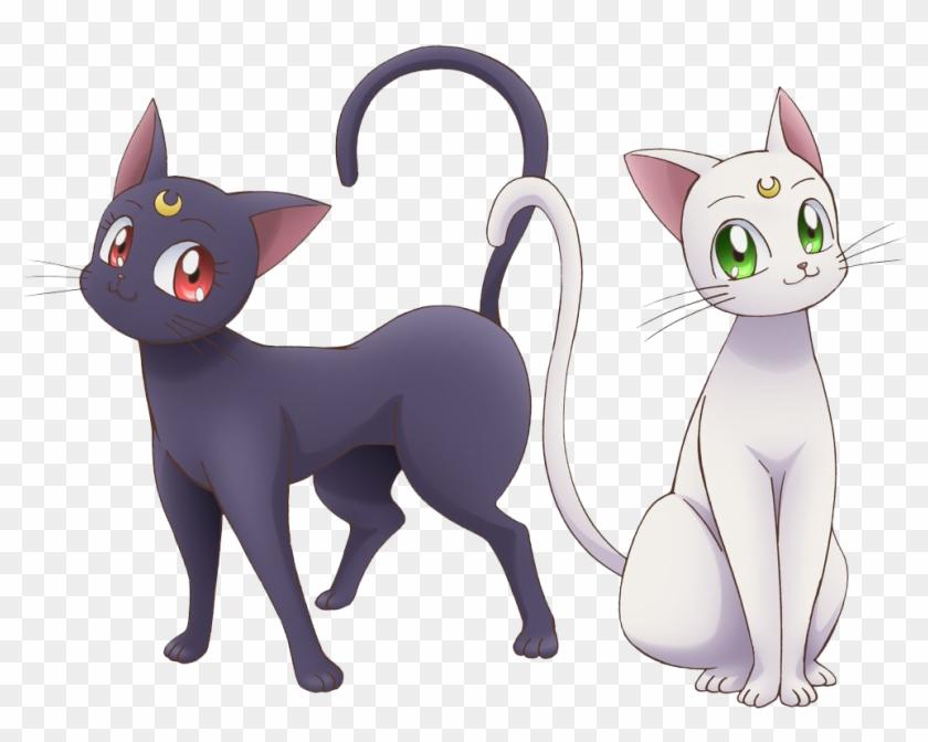 Sailor Moon Cats Png.