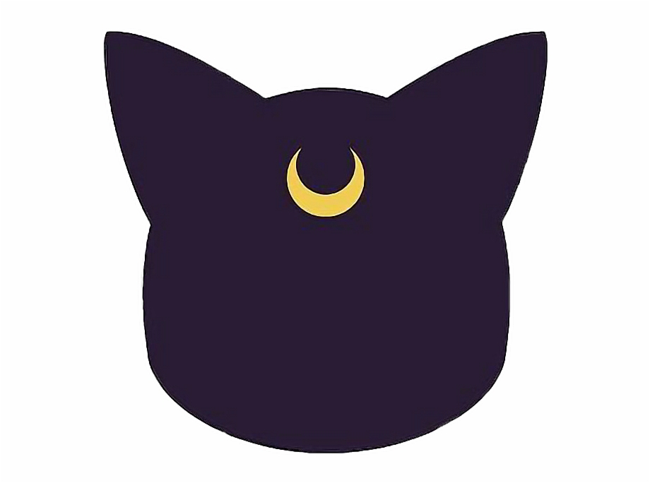 luna #sailormoon #cat #anime #freetoedit.