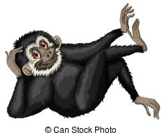 Gibbon Illustrations and Clipart. 381 Gibbon royalty free.