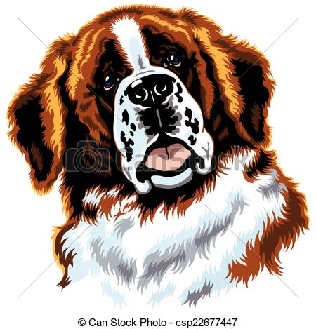 Saint bernard Clipart Vector and Illustration. 215 Saint bernard.
