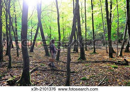 Stock Images of teenager walking around gathering mushrooms, Saint.