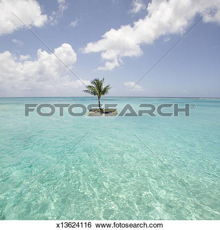Stock Images of Saipan, Small island with palm tree in sea.