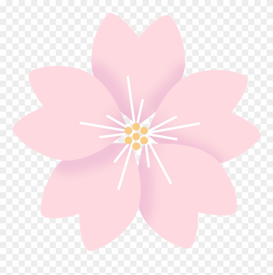 Flowers Cherry Blossom Sakura Clipart (#2946597).