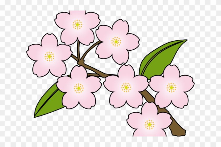 Cherry Blossom Clipart Vector.