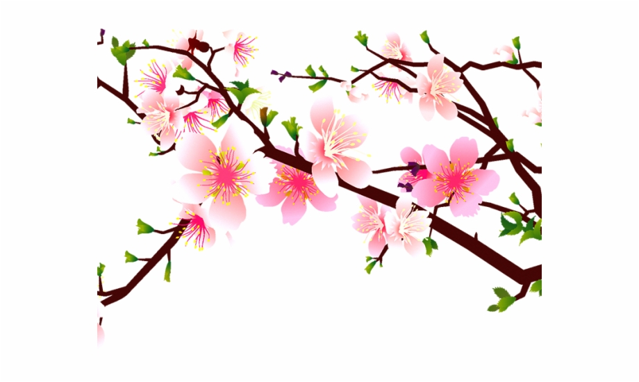 Sakura Blossom Clipart Stylised.