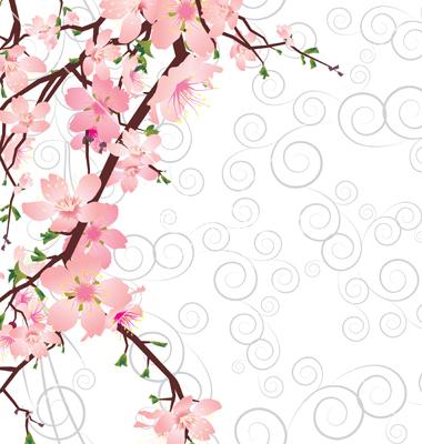 Sakura clipart.