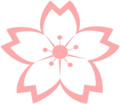 sakura drawing flower.