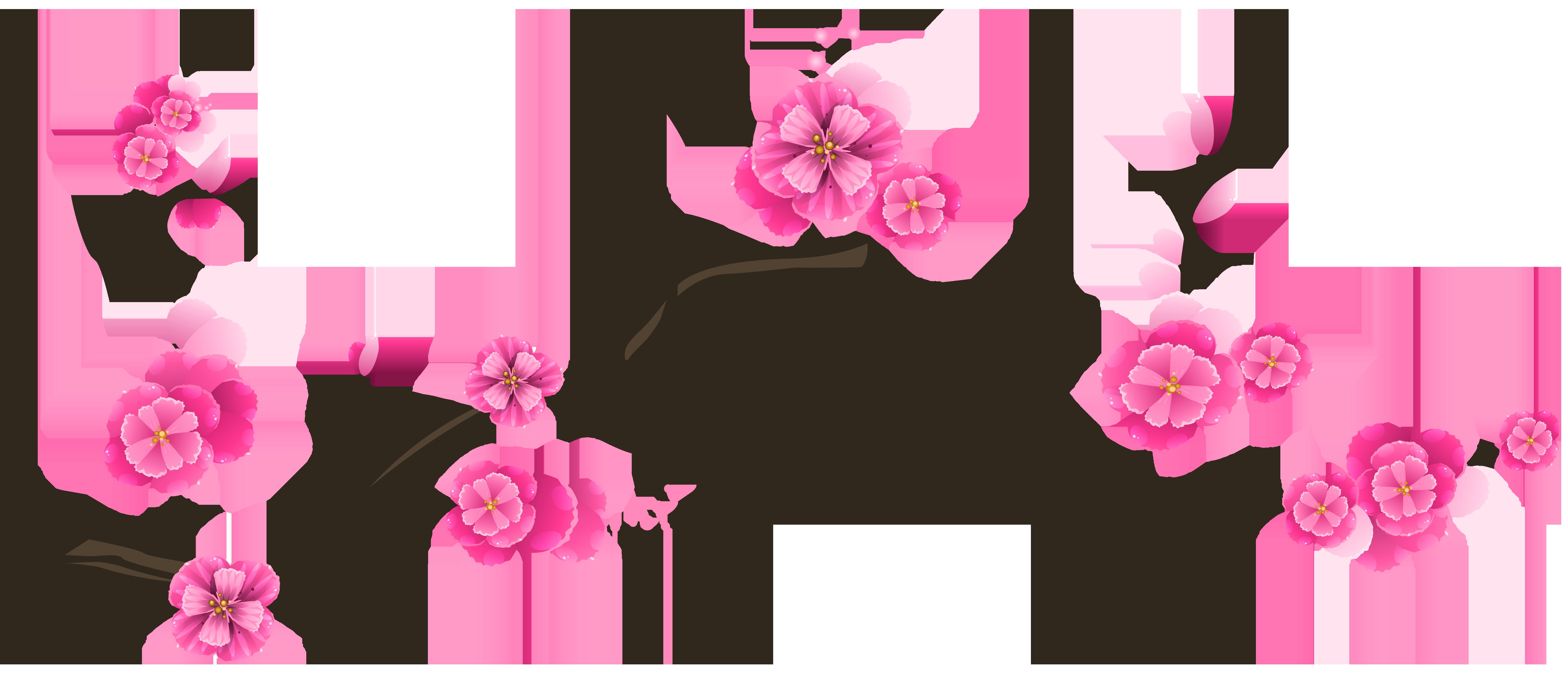 Sakura Branch Transparent Clip Art Image.