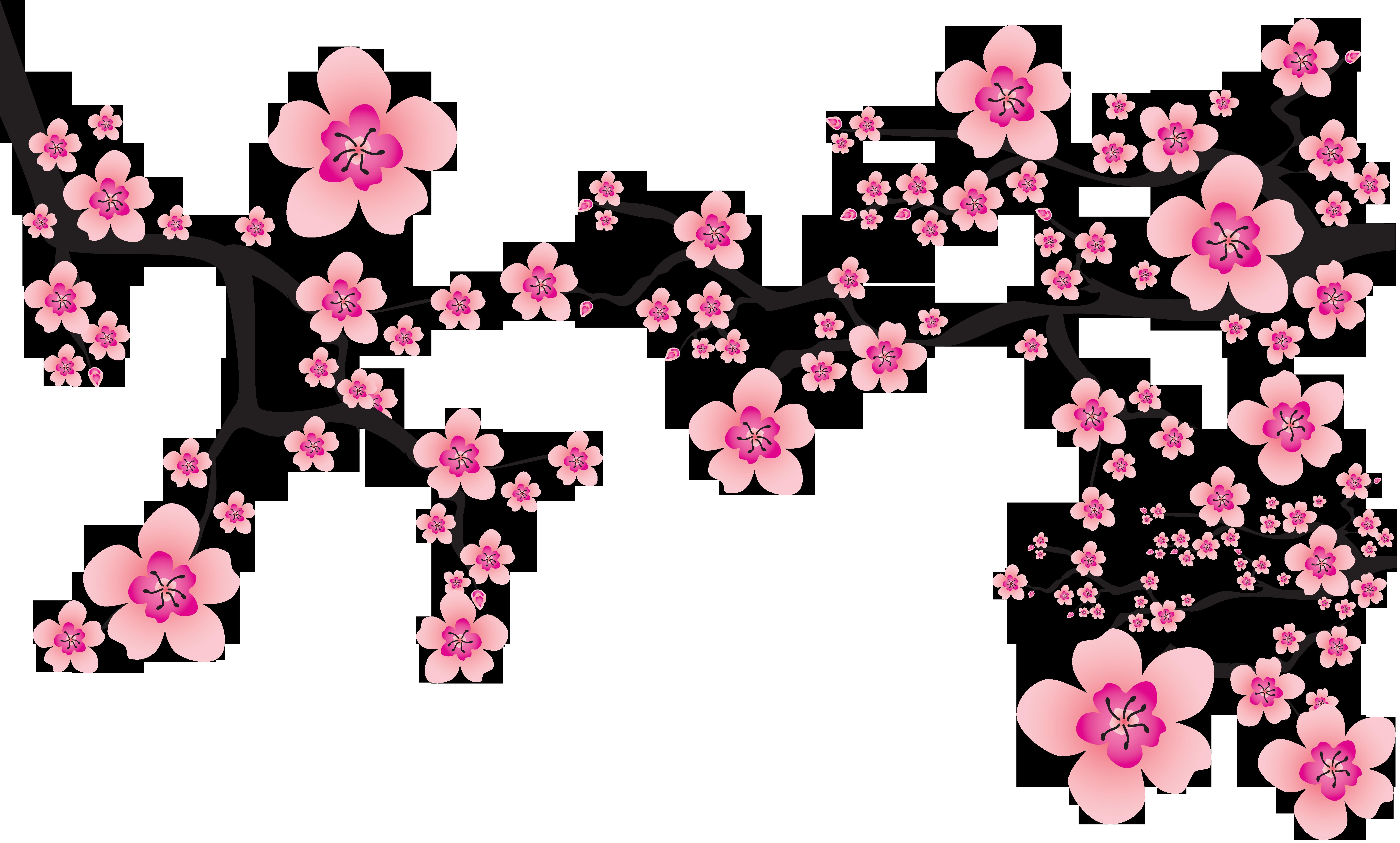 Cherry blossom Cerasus Clip art.