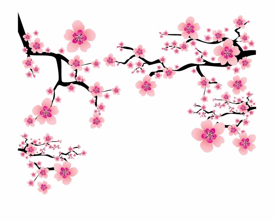 Cherry Blossom Plum Blossom Clip Art.