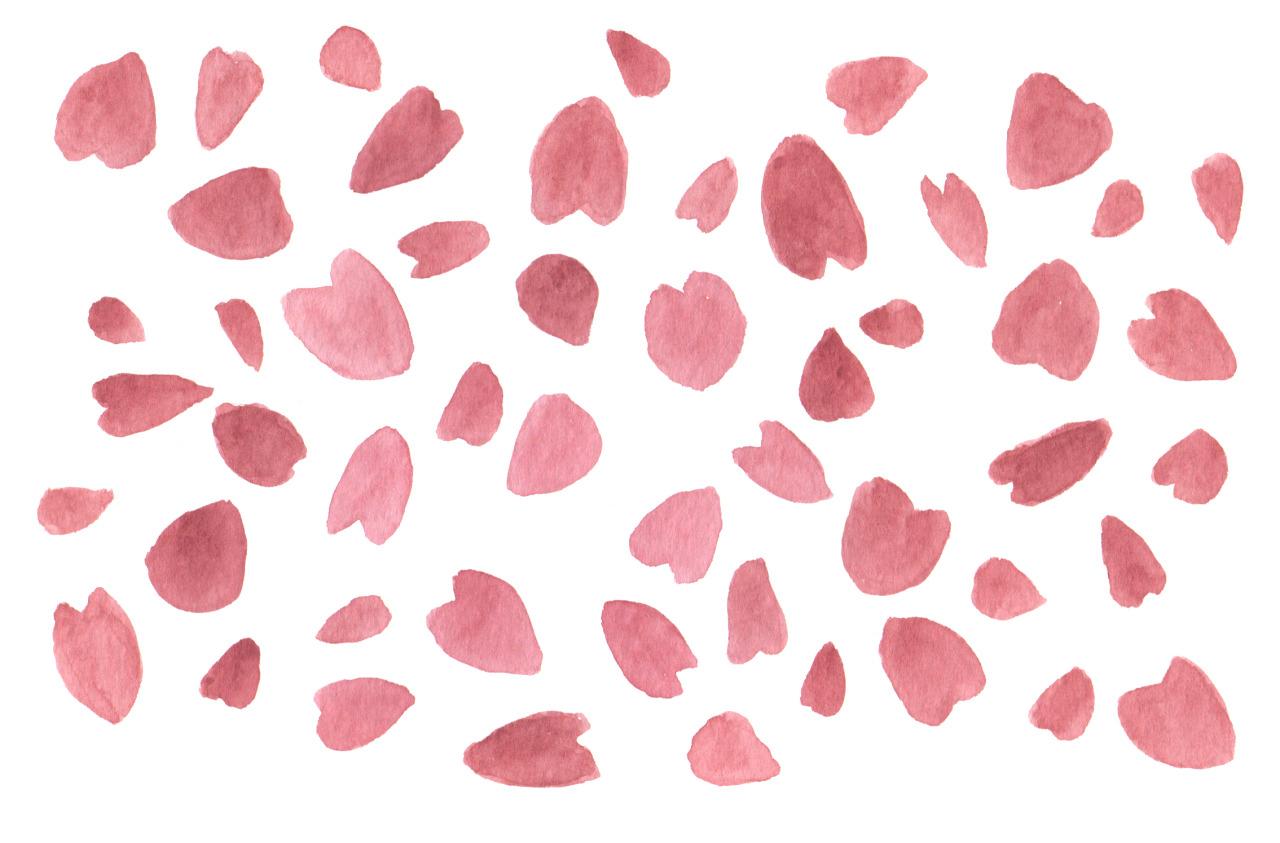 Sakura Petals Clip Art #34559.
