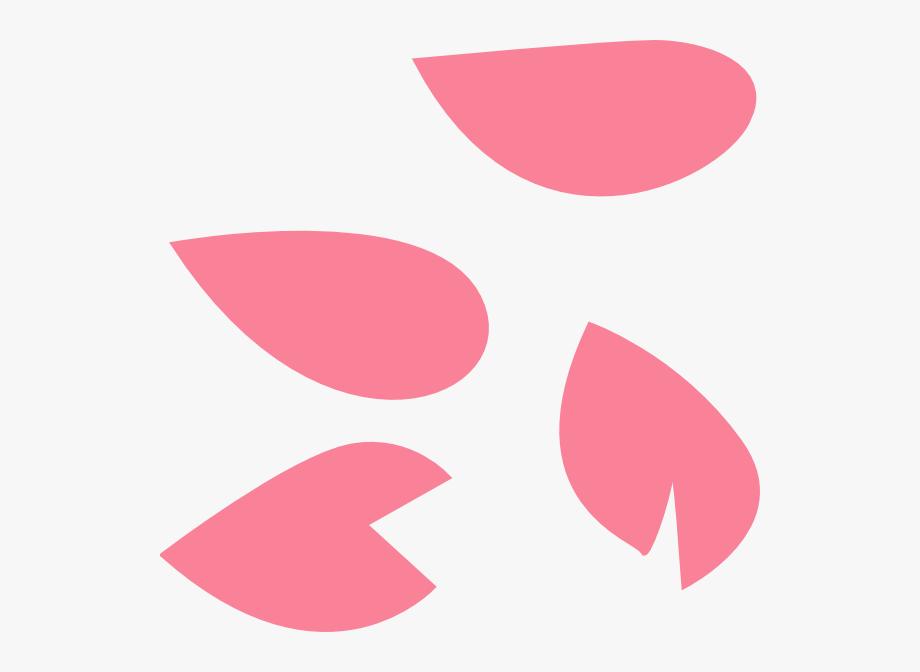 Cherry Blossom Petal Vector , Transparent Cartoon, Free.