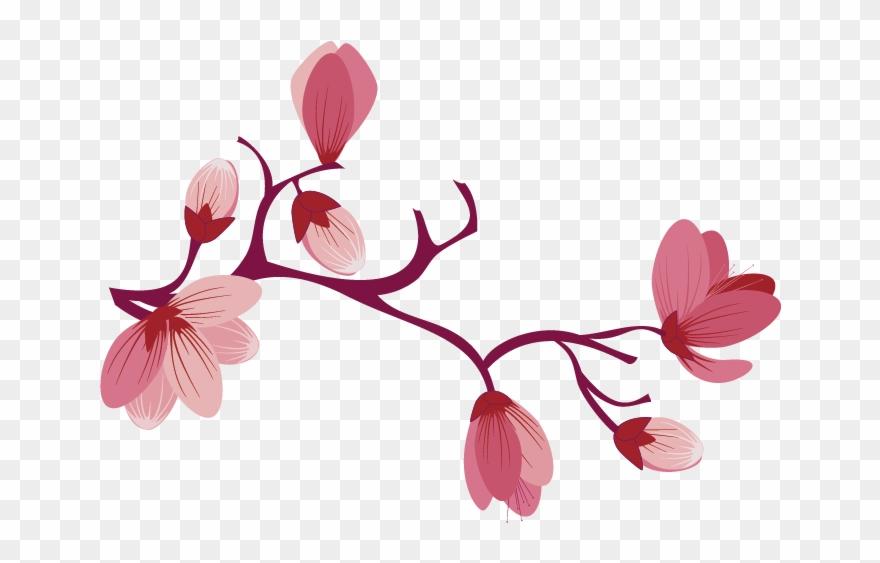 Sakura Pink Flowers Png Free Background.
