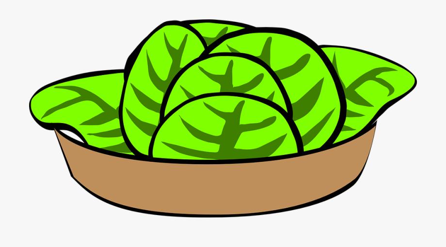 Bowl Salad Food Vegetables Lettuce Diet Fresh.