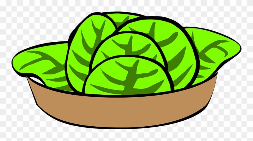 Salad Clipart Lettuce.