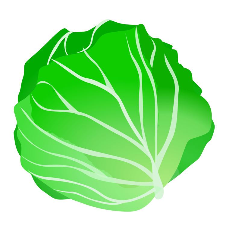 Cabbage clipart lettuce leave, Cabbage lettuce leave.