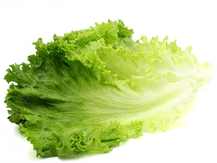 Salad Leaf Png Vector, Clipart, PSD.
