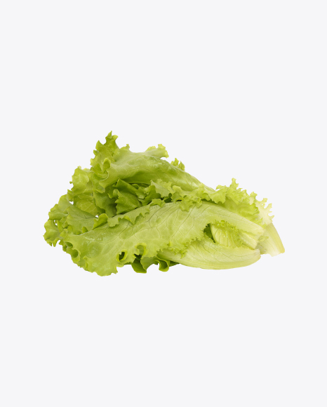 Download Green Salad Leaves Transparent PNG on Yellow Images 360°.