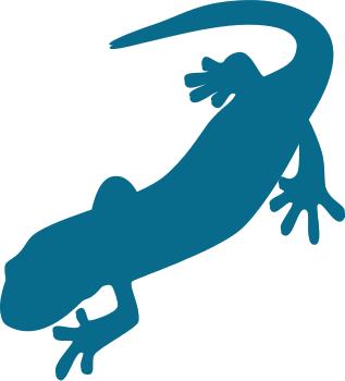 salamander outline.