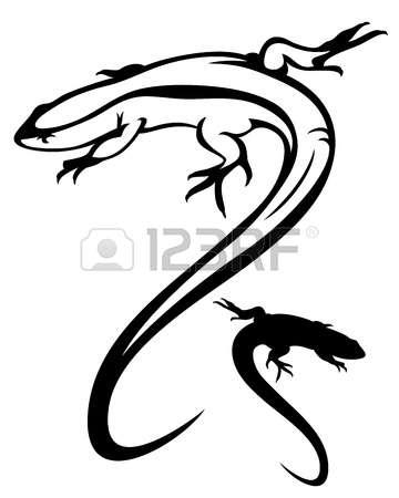 1,948 Salamander Stock Vector Illustration And Royalty Free.
