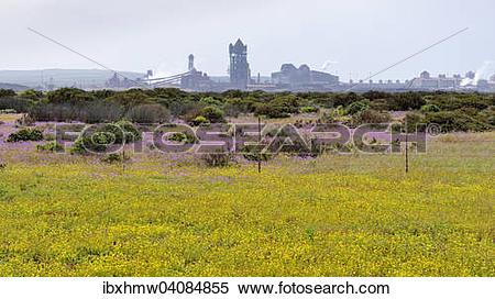 Stock Image of Steelworks, Saldanha Steel, Saldanha, Western Cape.