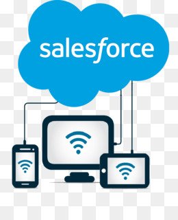Salesforce.com Application software Customer relationship.