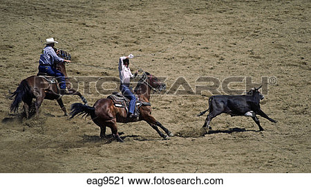 Steer roping clipart.