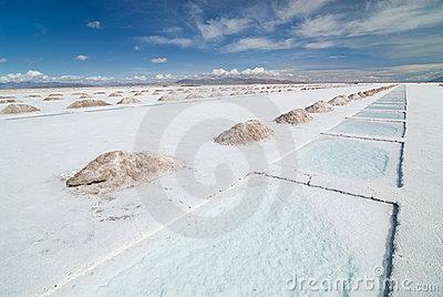 Salinas Grandes On Argentina Andes Is A Salt Desert In The Jujuy.