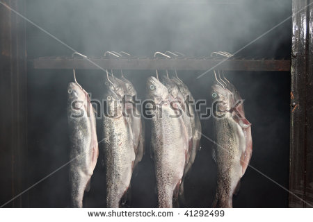 North American Fish Stock Photos, Royalty.