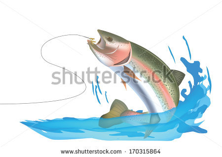 Rainbow Trout Stock Vectors, Images & Vector Art.