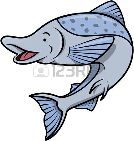 Salmo Stock Illustrations, Cliparts And Royalty Free Salmo Vectors.