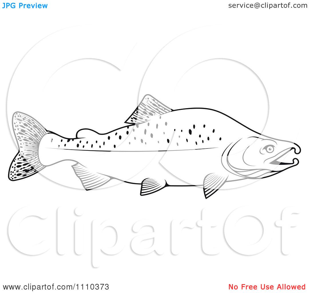 Clipart Black And White Humpback Salmon Fish.