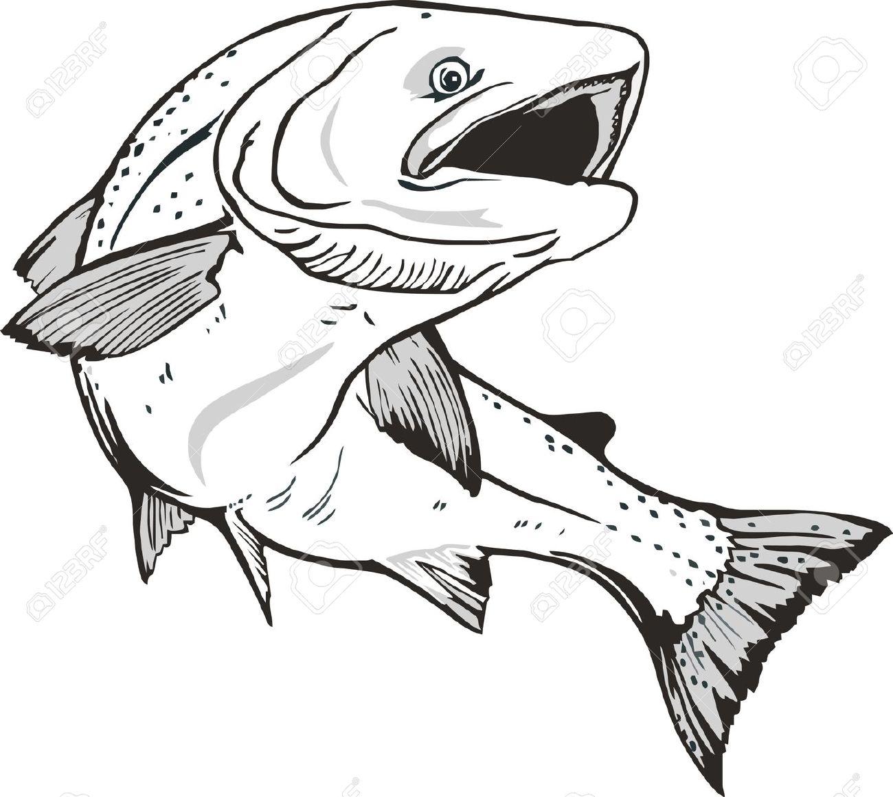 Salmon Clip Art Free.