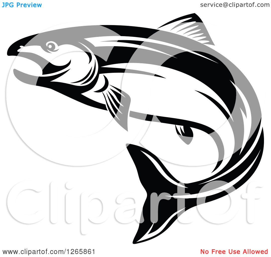 Clipart of a Black and White Salmon Fish.