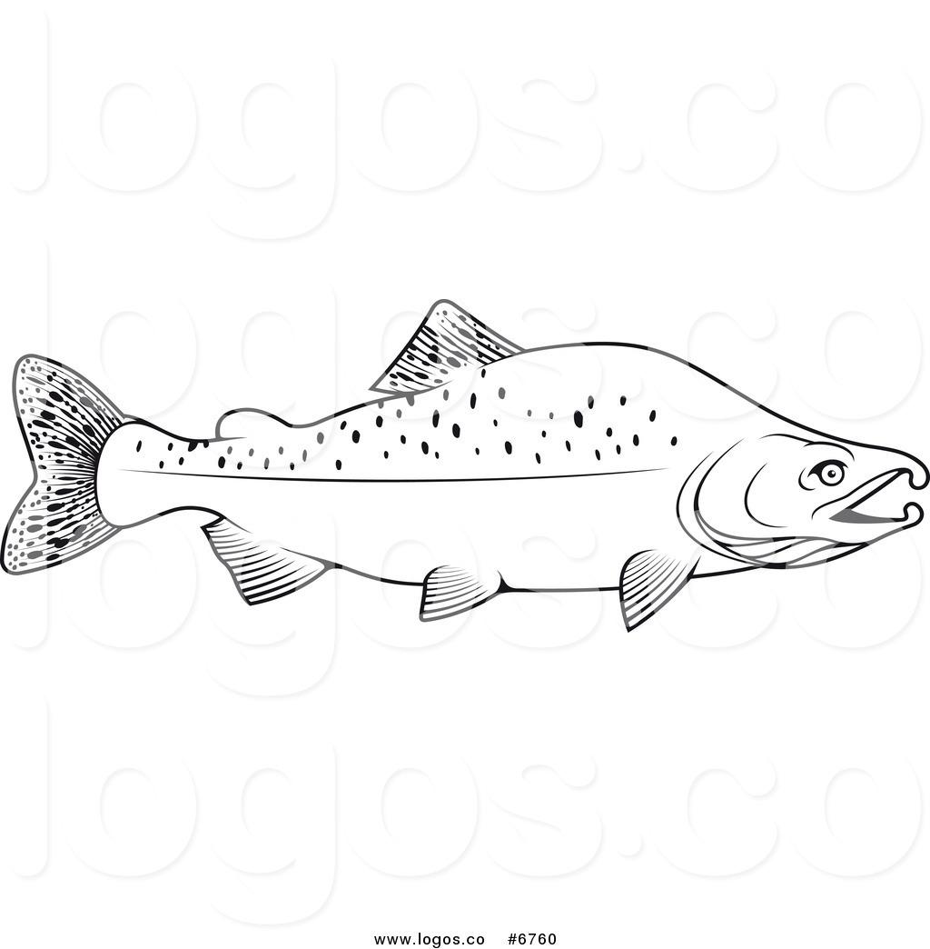 Salmon clipart black and white.