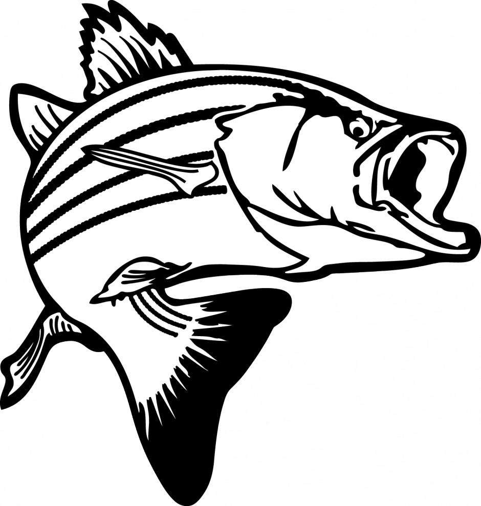 Salmon clipart black and white.