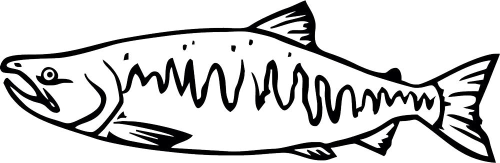 Salmon Clipart Tiny Fish.