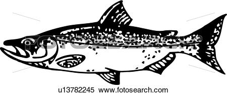 Clipart of Salmon u13782245.