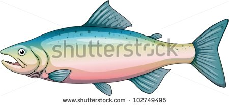 Salmon Pink Stock Photos, Royalty.