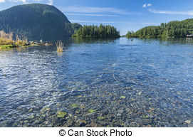 Stock Photography of Salmon Run.