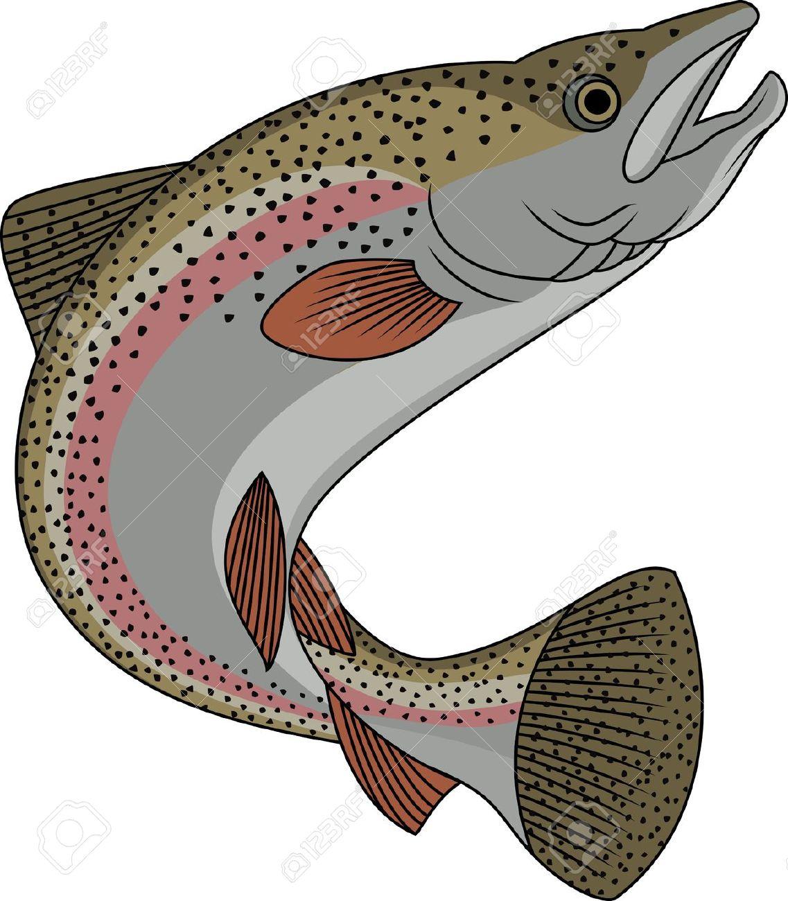 Rainbow trout clipart.