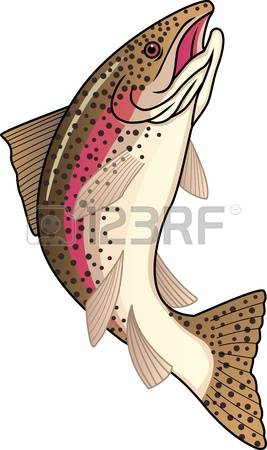 14,319 A Salmon Cliparts, Stock Vector And Royalty Free A Salmon.