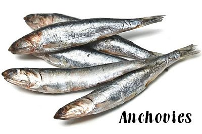 Anchovy Eaters.