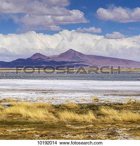 Stock Photo of Tara Salt Flat, Salar de Atacama; San Pedro de.