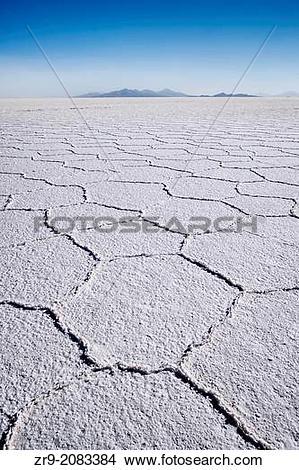 Stock Photo of Hexagonal shaped salt flats, polygonal lines of.