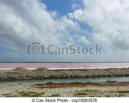 Picture of Salt flats.