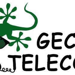 Gecko Telecom.